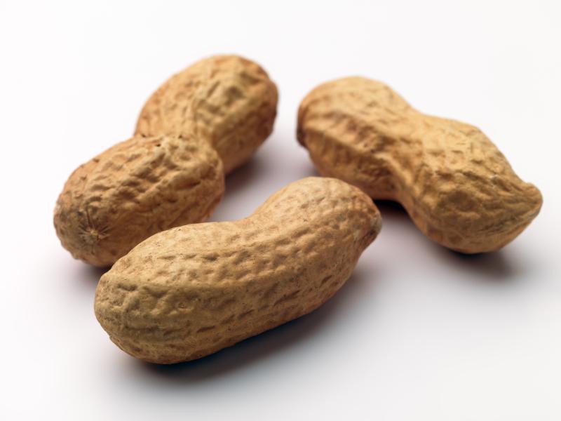 Goober Peas: We're Not Talkin' Peanuts! - Spectrum Marketing Group - New  Bedford, MA