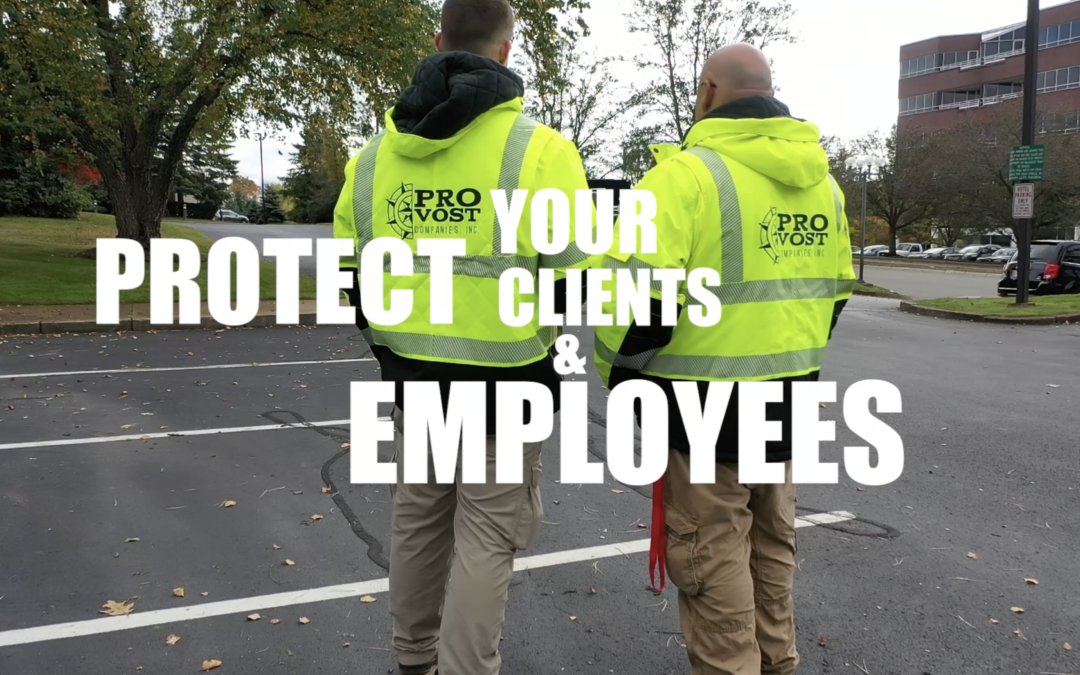 Spectrum Marketing Group Releases a Service Promo Video for Provost Companies